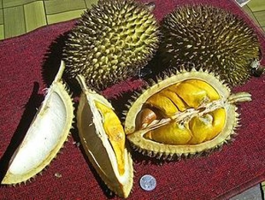 durian, foul smelling but smelly fruit