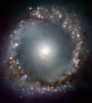 Galaxy NGC 1097 shows signs of devouring smaller galaxies by the appearance of what appears to be many globular clusters around the rim.