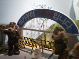 Teddy Bears dressed up in army uniform.