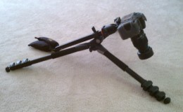 Position the tripod low to the ground for Macro Photography.