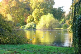 St. James Park, London:  Charles was allowed a final walk with his dog before his execution.