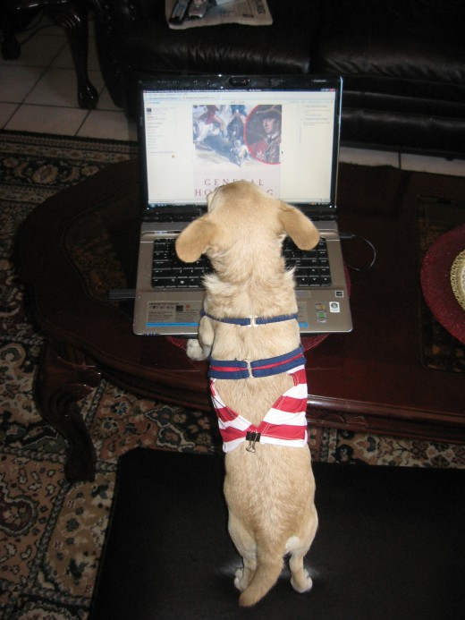 """Chika discovers the book """"General Howe's Dog"""""""