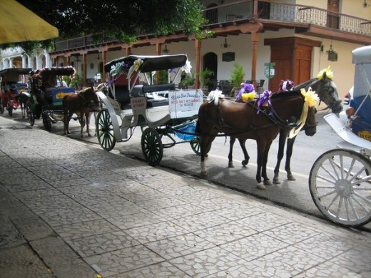 Horse Carriage Granada