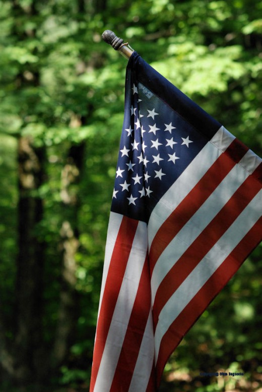 The red, white and blue looks good in the green of the woods.