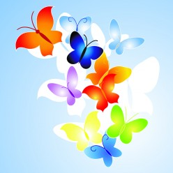 Where To Buy Butterfly Party Supplies