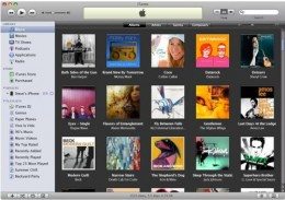 Which is the best iTunes cleanup program available...Is it Rinse or Tuneup Media?