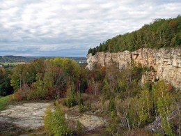 This is the Niagara escarpment in a region away from the falls and one can see how vertical the face is where the ground split in a 9.5 earthquake 12,600 years ago.