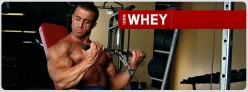 100 Whey Protein By Optimum Nutrition - How Effective Is It?