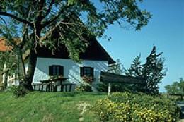 Kitzeck Wine Museum