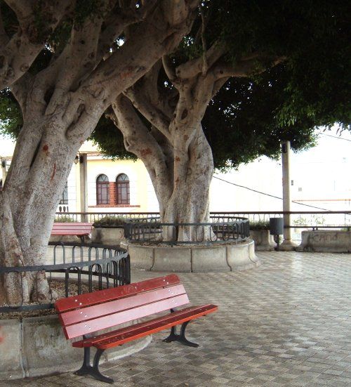 La Victoria square Photo by Steve Andrews