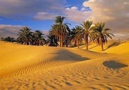 Western desert tours