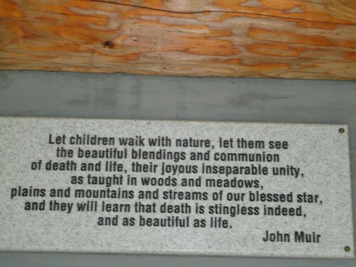 Death is stingless quotation from John Muir