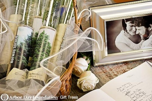 "Trees to plant are excellent ""green"" wedding favors."