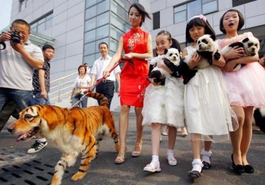 CREDIT: Ma Jian/Chinafotopress
