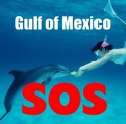 Gulf of Mexico SOS:  Helping Gulf Residents Get to Safety