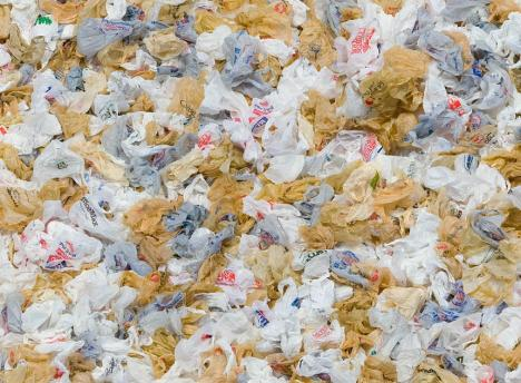 Many plastics can be recycled, but they are not.