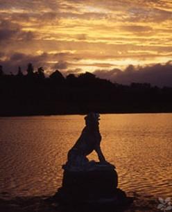 Petworth Lake at sunset