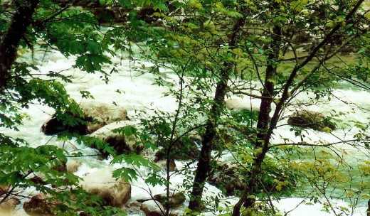 Rushing water below Snoqualmie Falls