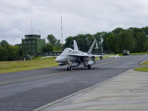 Hornet jet
