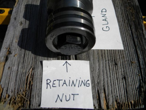 Retaining bolt or nut