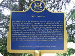 "Toronto History; ""A Fools Paradise"""