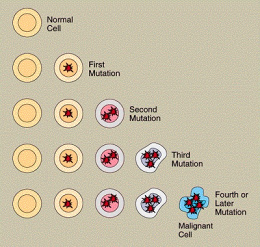Development of Cancer Cells