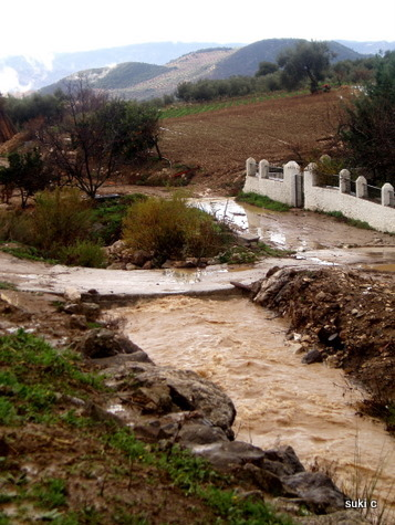 The river turned into a muddy torrent