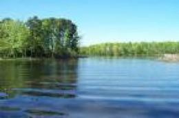 Lake Livingston TX