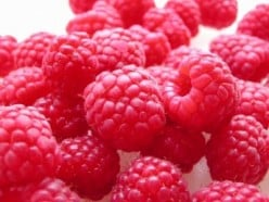 A Delicious Raspberry Treat Recipe - Puréed Raspberries