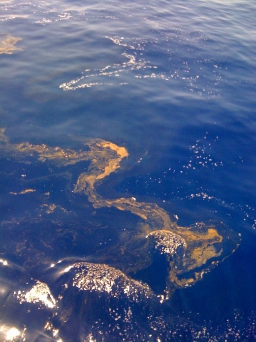 The second vial of Revelations is the oceans becoming like the blood of a dead man and the sea life dying. The BP oil spill in the Gulf of Mexico fulfills this very closely. Coincidence or cycle?