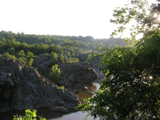 Great Falls, Maryland. Copyright Tia D. Peterson. May not be re-used without permission.