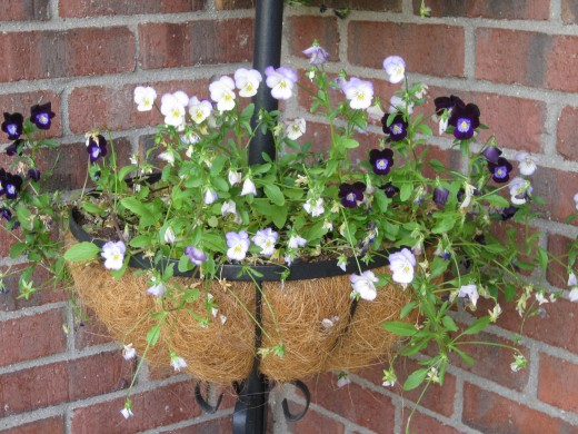 Hanging baskets of flowers can free space for sitting on a porch.