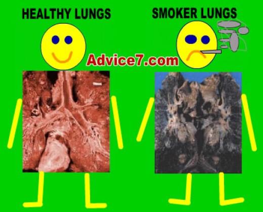 c/o quitcigarettefast.com