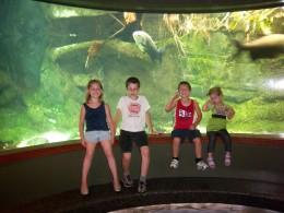The kids loved the aquarium!