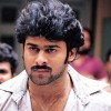 mohanraj1978 profile image
