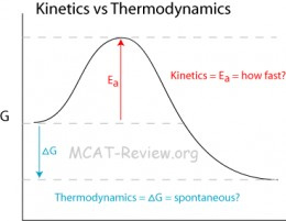 This curve shows losses due to thermodynamics in kinetic energy where some energy is converted to heat due to friction. The absolute amount of energy remains constant, but is transformed.