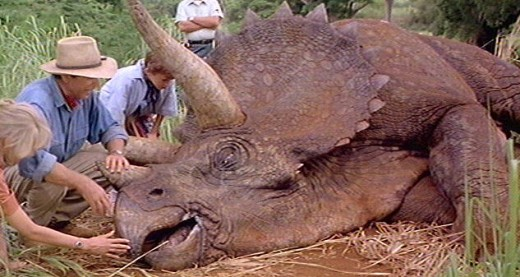 A triceratops in the movie 'Jurassic Park'