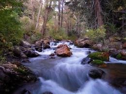 Hill Stream, copyright by Drewe Zanki. (Pictures God's abundant mercy!)