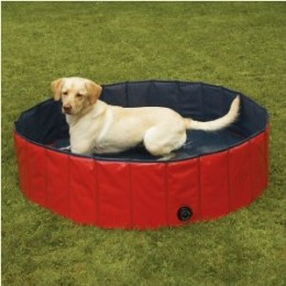 Hard Plastic Baby Pools For Dogs