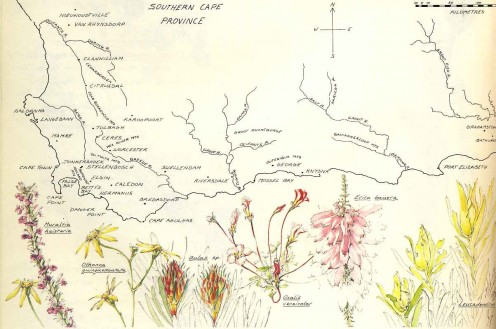 "Map of the Fynbos region from the book ""A Fynbos Year"" by McMahon and Fraser."