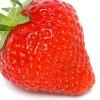 strawberrynet profile image