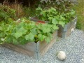 Grow vegetables or seeds in a limited space, use recycled pallets or pallet collars!
