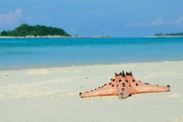 The White Sand Island (Photo by Wawies Wisnu Wisdantio)