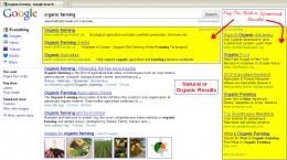 Pay Per Click & Naural Organic Lisiting