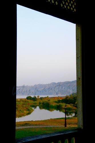 framed by a window