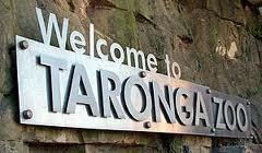 Taronga Zoo welcome