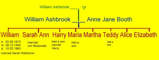 Don't confuse William Ashbrook's sister Sarah Ann with his wife, also called Sarah.
