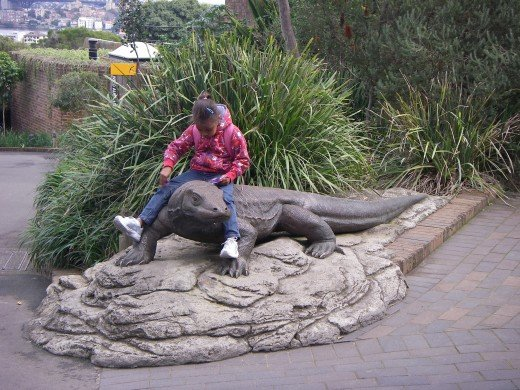 Young zoo visitor rides a giant reptile