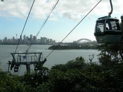 Sky Safari cable going up to the zoo with the view of the city skyline and the Sydney Harbour Bridge in the distance