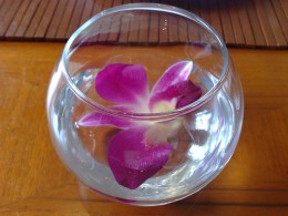 Use floating calla lilies in a fishbowl to incorporate your wedding theme. Image by Nikilok on Flickr.